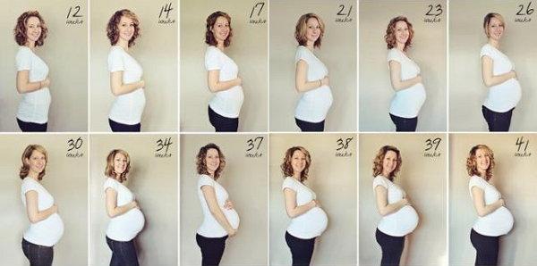 Размер живота при беременности от чего зависит